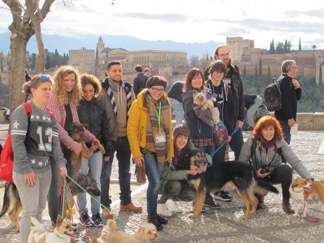 grupo-mascotas-balea-travel