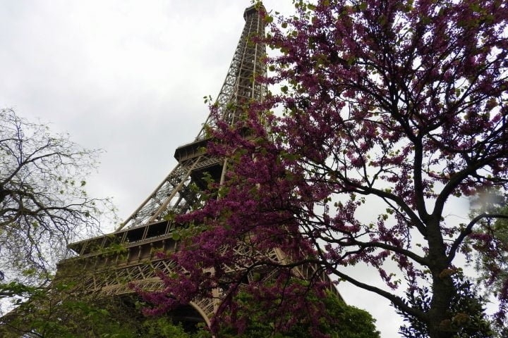 tour eiffel paris balea