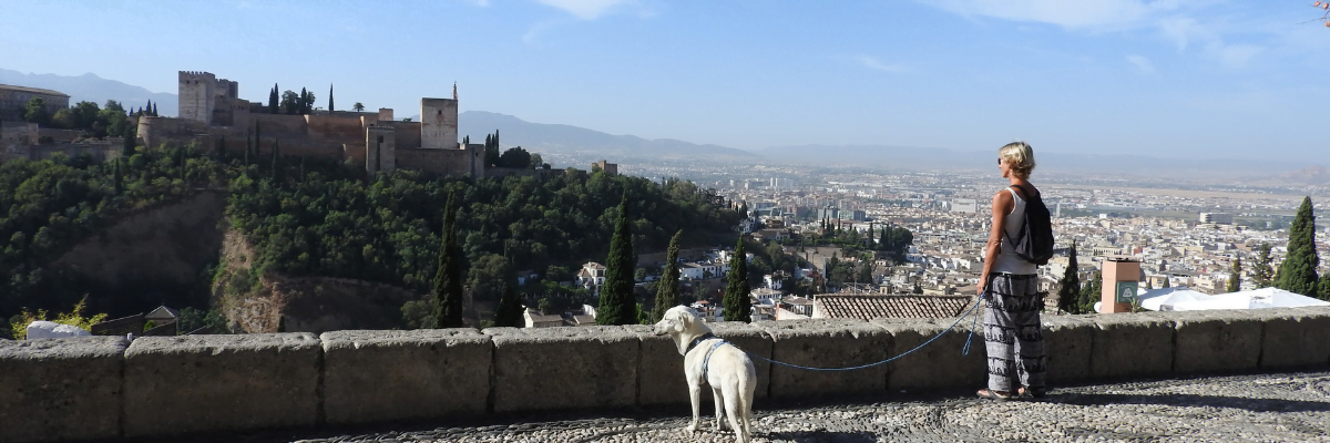 Guided tour of the Albaicín with your dog