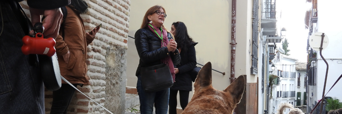 Guided tour of the old Jewish quarter of Granada with your dog