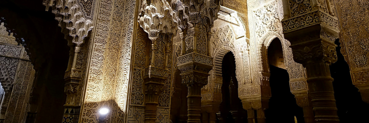 Guided visit to the Alhambra at night premium: only 10 people