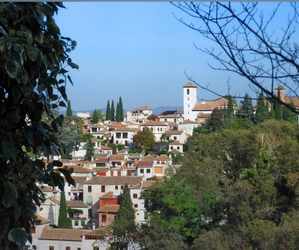 Zawi ibn Zirí: el origen del Reino de Granada